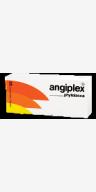 Angiplex